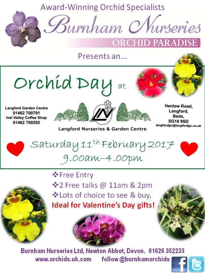 Orchid day 2017 at Langford Garden Centre