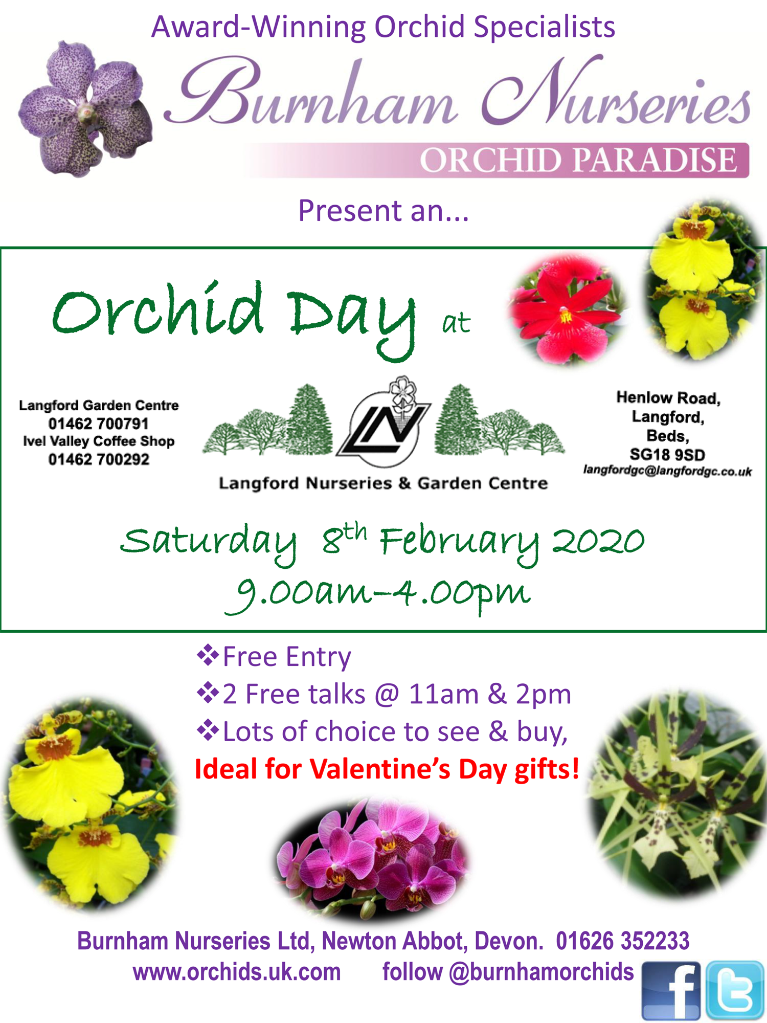 Orchid Day 2020